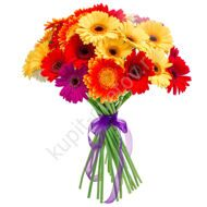 Bouquet of 35 gerberas