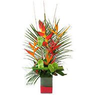 Arrangement with Strelitzia and Heliconia