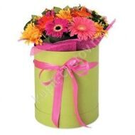 Gerberas in a large hatbox