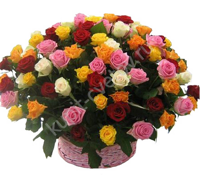 Basket of 101 Roses Kenya