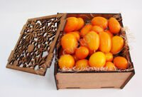 Casket with kumquat