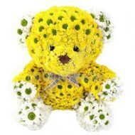 Yellow Bear of flowers