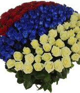 Bouquet of 303 roses patriot
