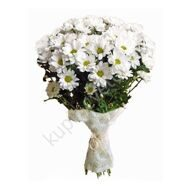 Inexpensive bouquet of chrysanthemums