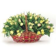 Basket with 49 tulips