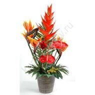 Arrangement of anthuriums and strelitzia