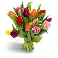 Bouquet of 15 tulips