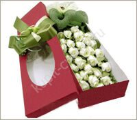 Box of 31 white roses