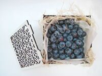 Casket with  blueberries