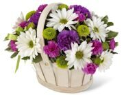 Small basket of chrysanthemums