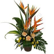 Arrangement of the strelitzia and chrysanthemums