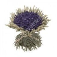 Bouquet of lavender and cones