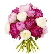 Bouquet of many-colored peonies