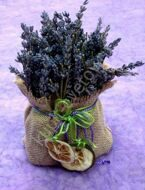 Lavender with a decor
