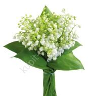 Bouquet of 75 lilies-of-the-valley