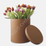 Tulips in a hatbox