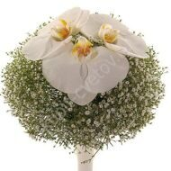 Wedding bridal bouquet with gypsophila