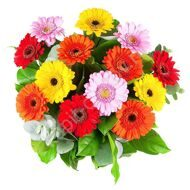 Bouquet of mini gerberas