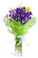 Inexpensive bouquet of irises