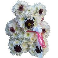 White Flower Bear