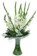 Touching white gladiolus